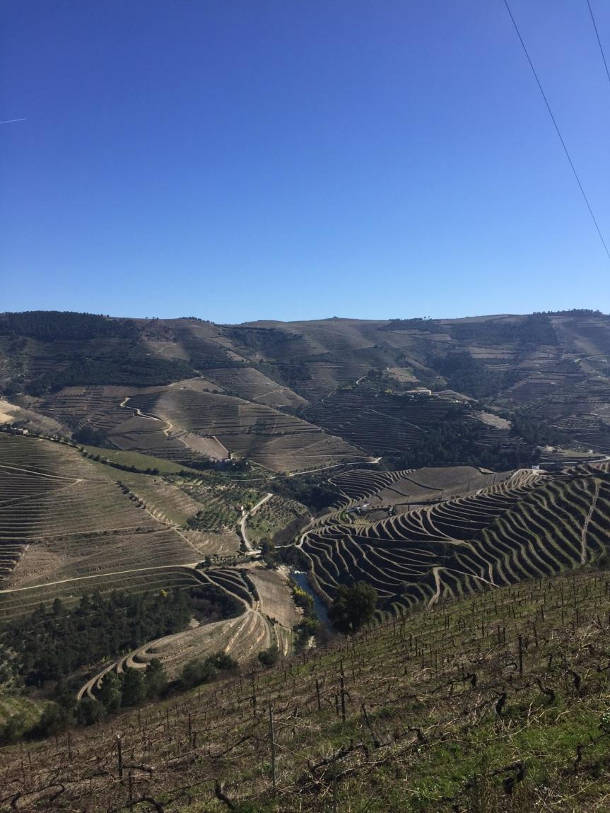 Wineweek 16: PortugalEdition