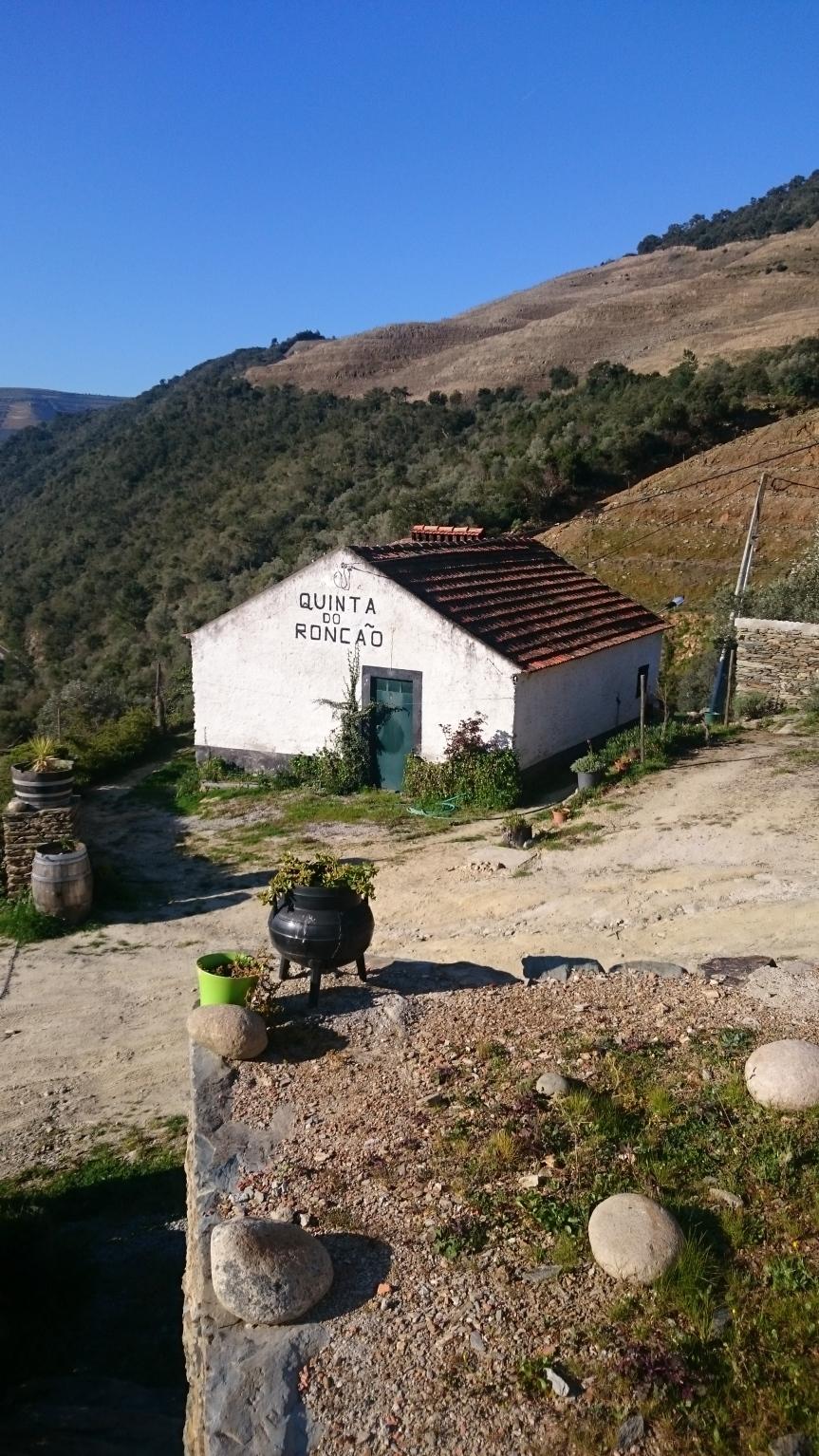 My week in Portugal, vol1
