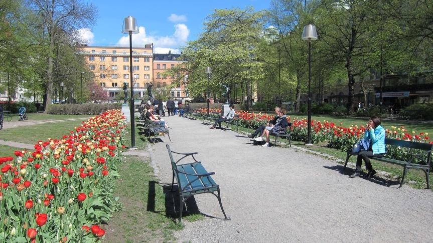 Maria Torget Stockholm