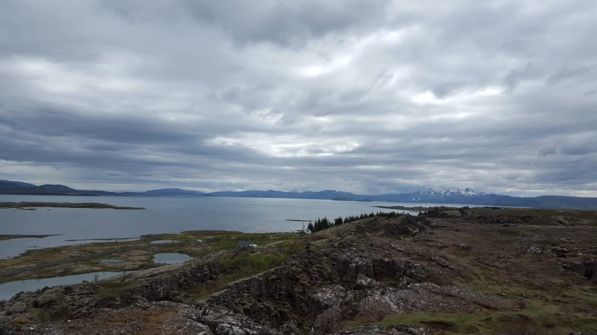 Wineweek 31: Greetings From Reykjavik