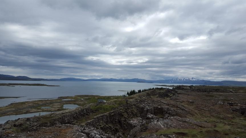 Wineweek 31: Greetings FromReykjavik