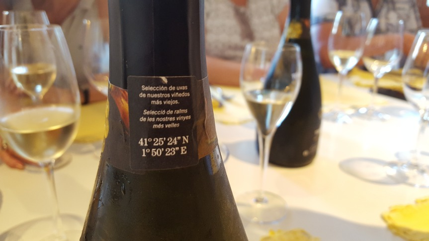 The coordinates of the grapes displayed on the bottle of Gran Torello