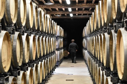 The winemaker Nicolas Jaeger showing us around at Alfred Gratien