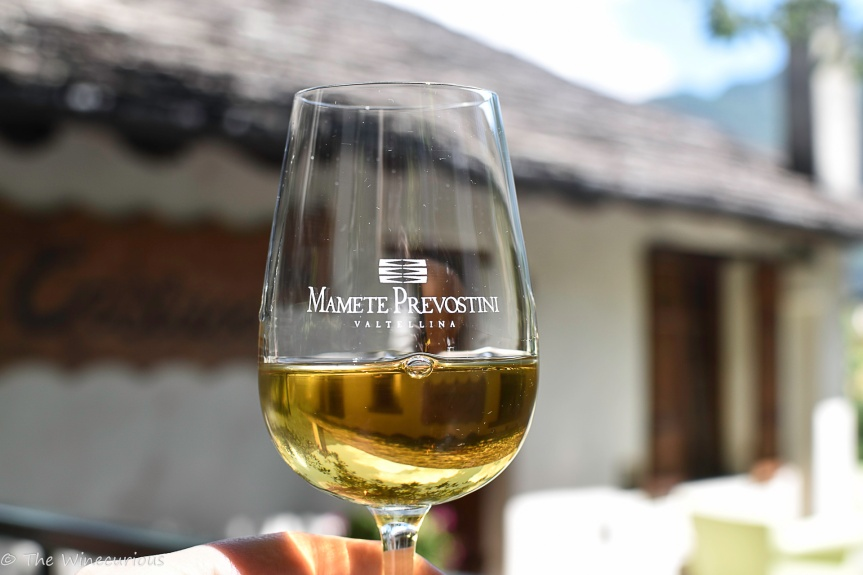 Visiting the Vineyards of MametePrevostini