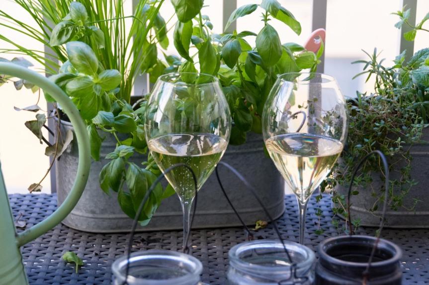 Wineweek 135: The HeatWave