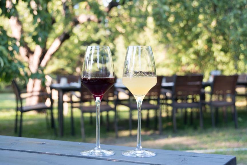 Tallinn – WineCity!