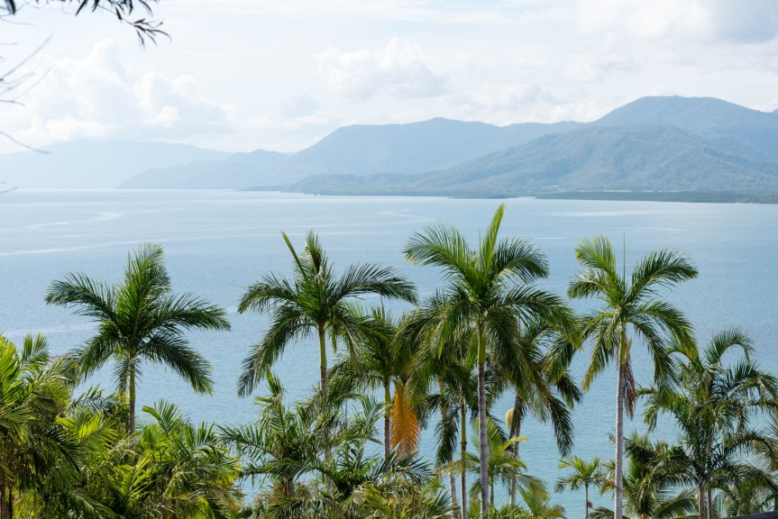 Deep in the Daintree – What to do in Cairnsvol.2